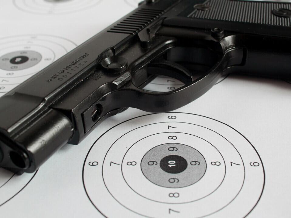 Šaudymas iš ginklų