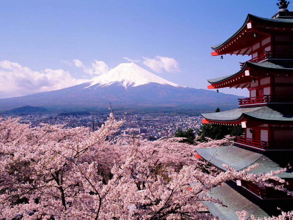 Japonų kalbos kursai