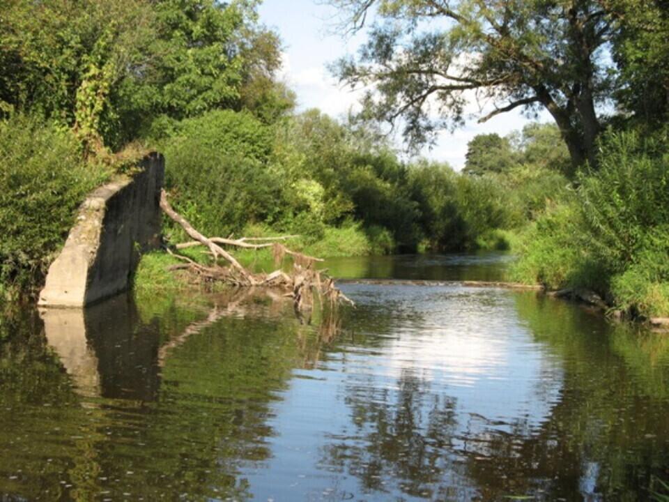 Žygis baidarėmis Širvintos upe
