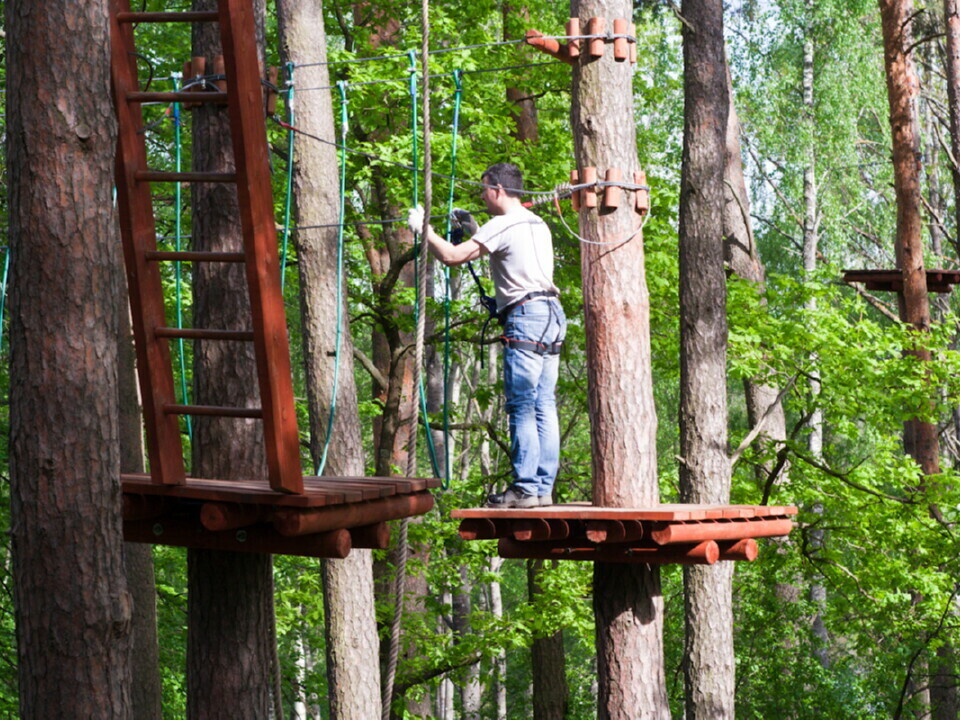 """Pramogos """"Tarzanijos"""" nuotykių parke suaugusiam"""