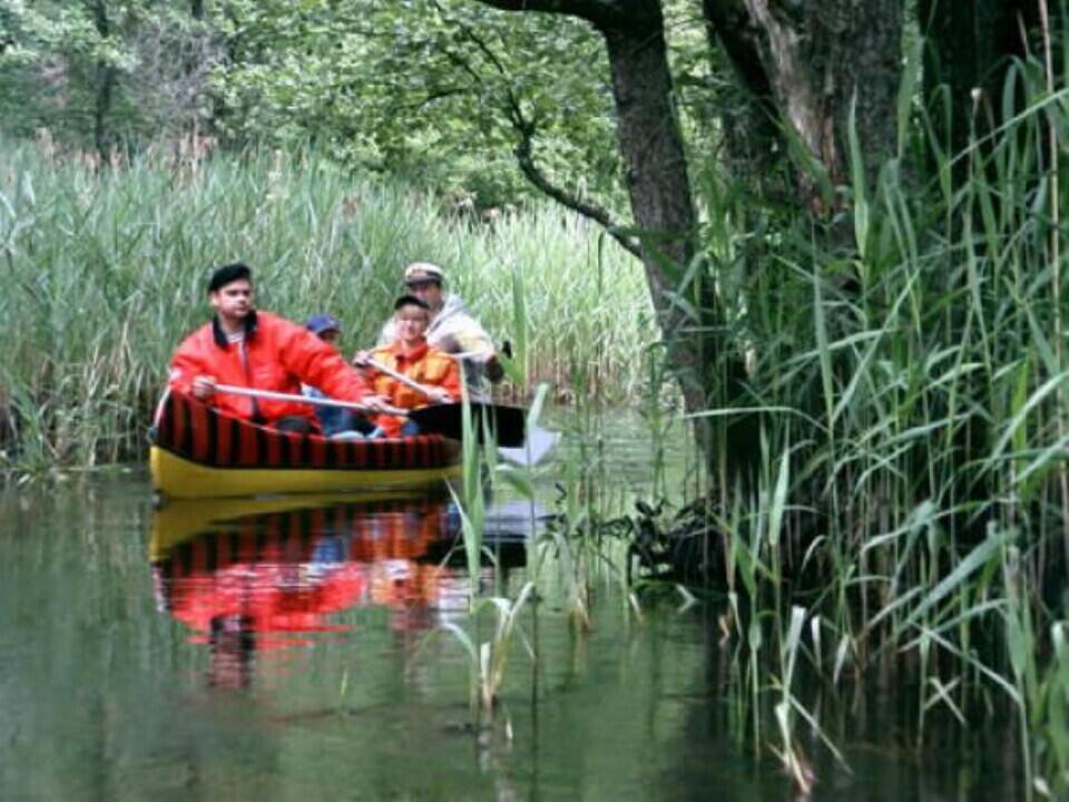 Plaukimas baidarėmis Žeimenos upe