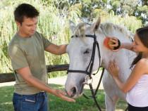 Jodinėjimo pamoka žirgyne