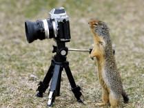 """Orientacinis žaidimas """"Foto medžioklė"""""""