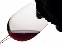Vyno paskaita